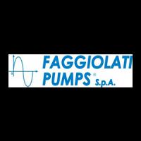 Faggiolati-Pumps-Logo